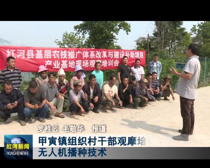 甲寅镇组织村干部观摩培训无人机播种技术