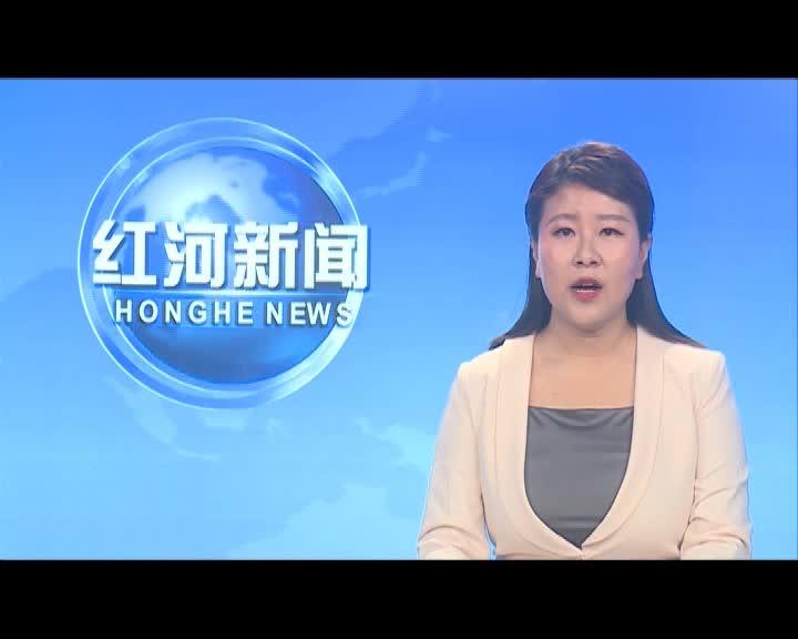 红河县宣传思想文化系统开展学党史  祭英烈  文明祭扫志愿服务活动